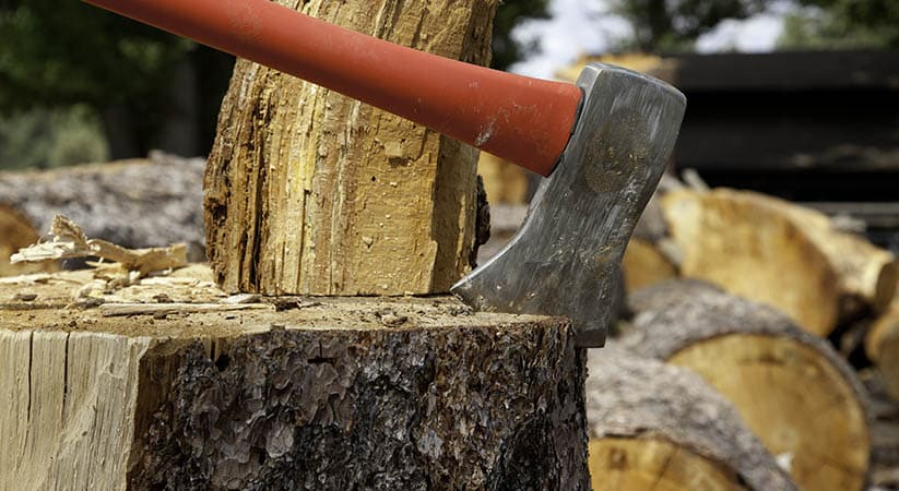 What are the different tasks carried out by tree removal services?